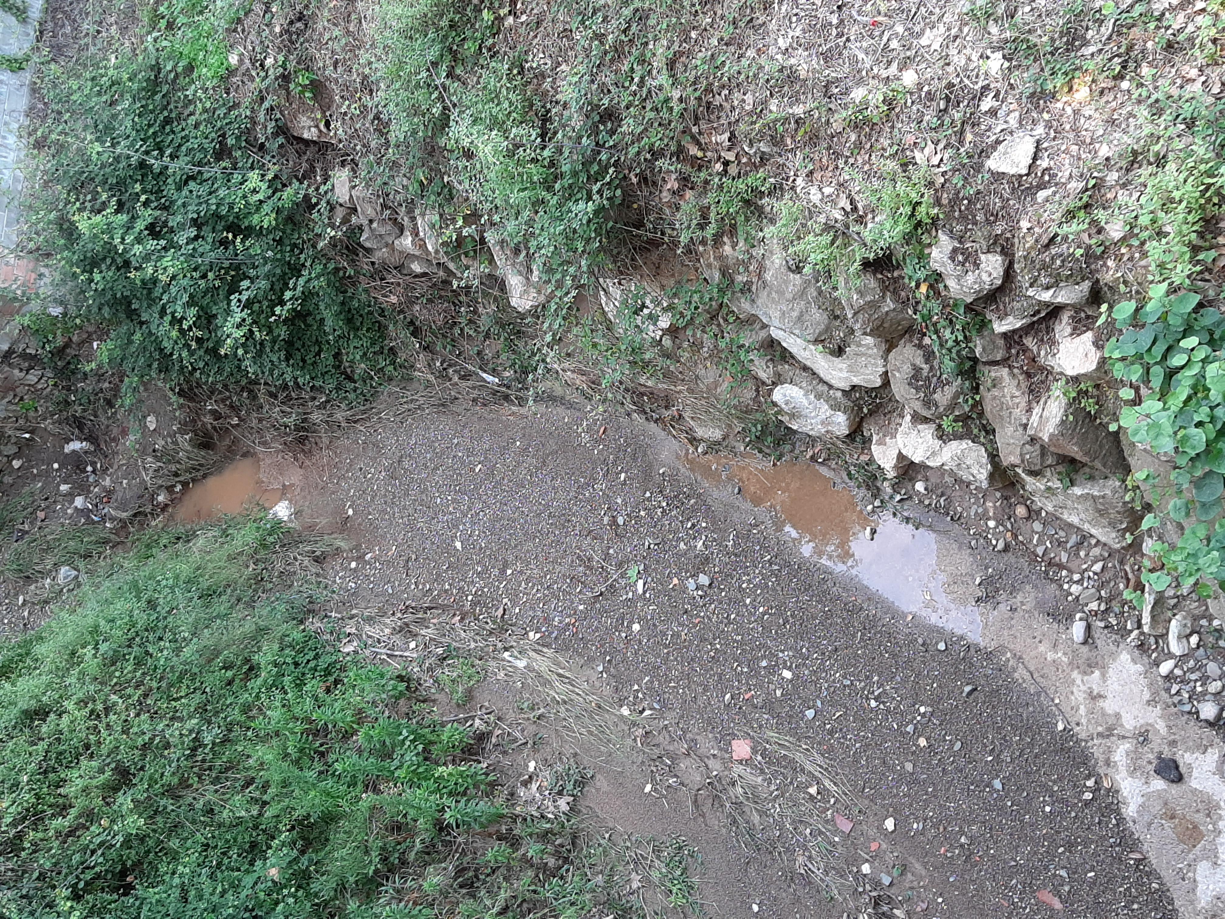 L'aigua baixant pel barranc